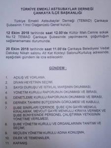 TEMAD Çankaya Şube Başkanlığı Yönetim Kurulu 12 Eylül 2018 tarihinde 1. Olağanüstü Genel Kurul kararı almıştır.